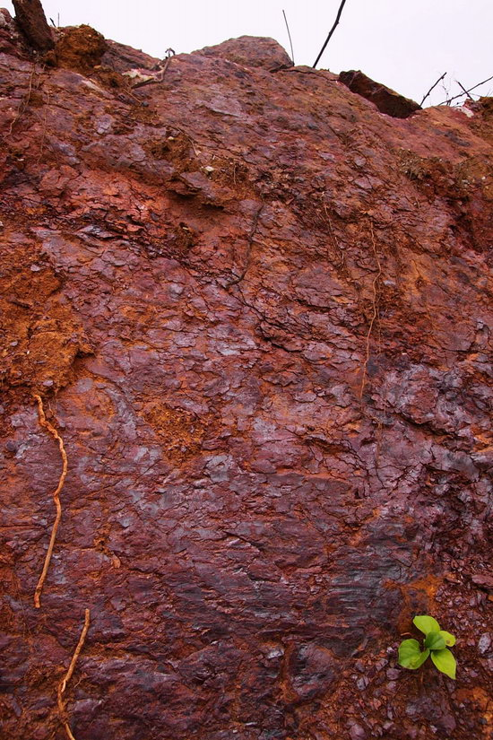 red clay 2