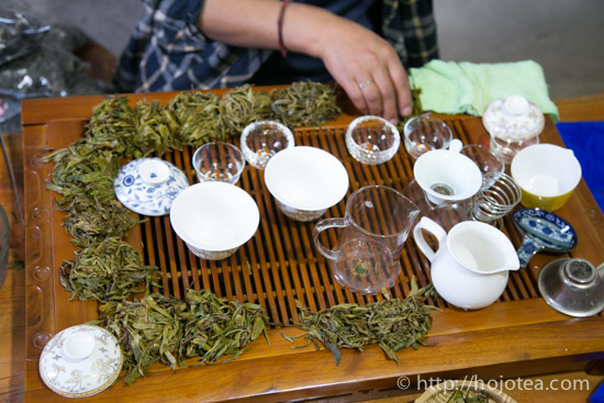 プーアル茶のテイスティング