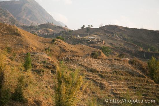 View in Lincang