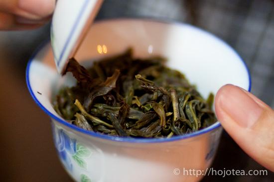 いれたての鳳凰単叢烏龍茶の茶葉