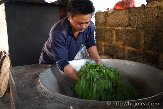 pan-frying process of pu-erh tea