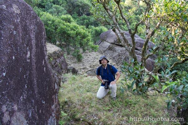 Wu Dong mountain