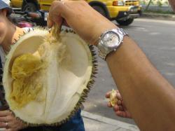 durian4.jpg