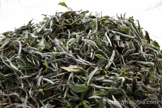 white tea : bay mu dan