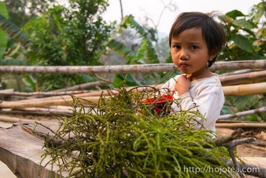 A girl in Yunnan