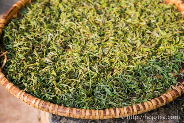 pu-erh tea process