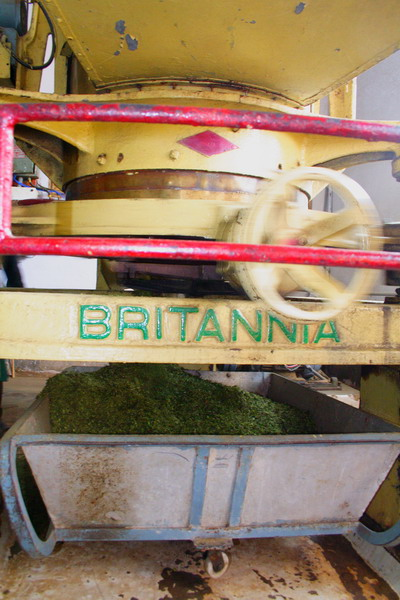 Britannia is a very traditional brand of UK.