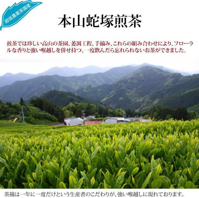 日本茶(緑茶)本山蛇塚煎茶