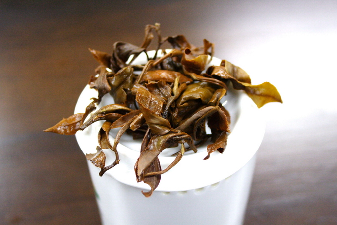 The leaves shown here lies on the professional inspection cup. If the tea leaves are of good quality, the brewed leaves give a strong flavor as well. This is indicating the good material is used.