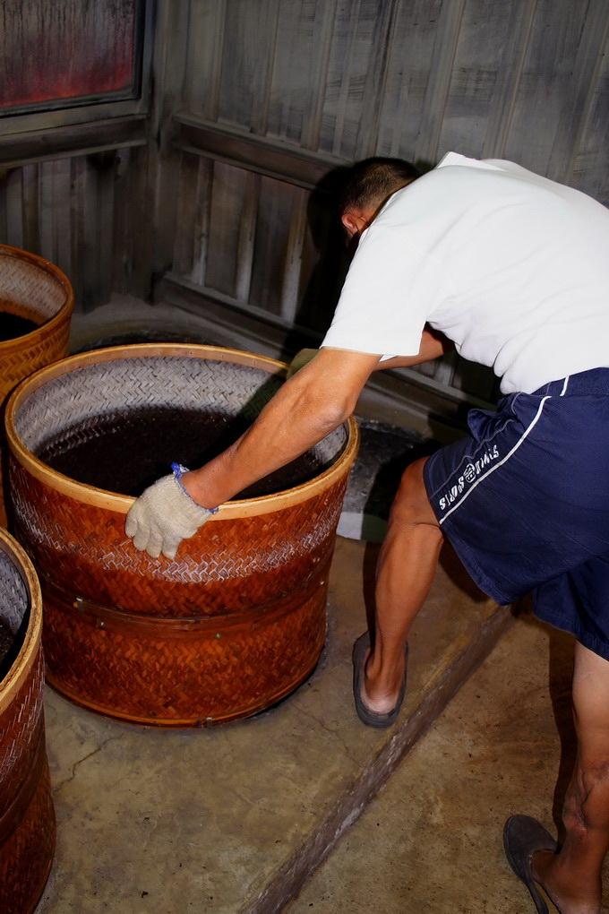 Veteran tea master is processing the vintage tea.