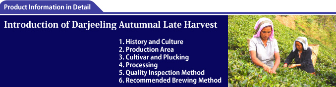 Introduction of Darjeeling Autumnal Late Harvest