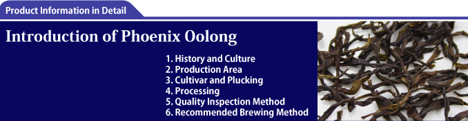 Introduction of Phoenix Oolong
