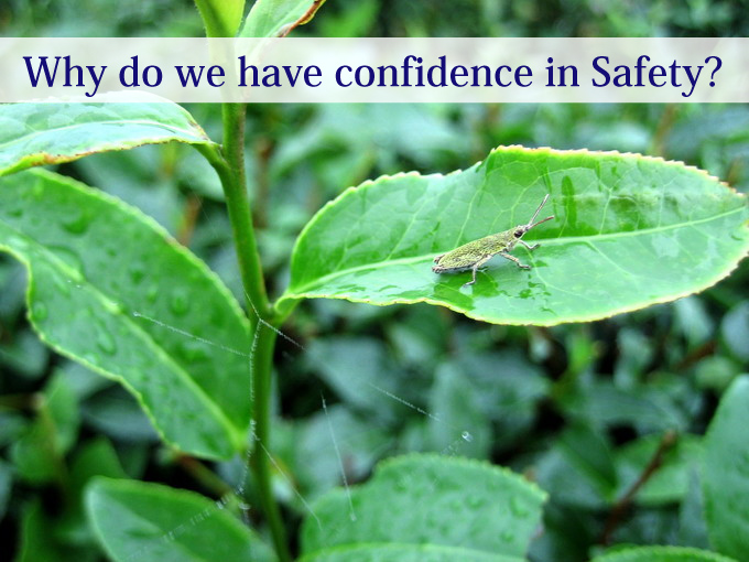 Why do we have confidence in Safety?
