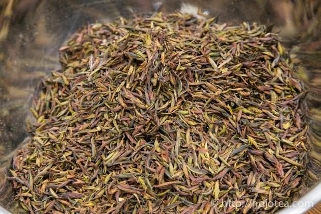 野生のプーアル茶