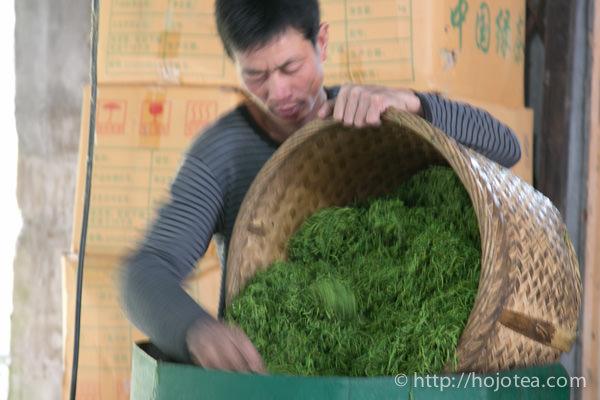 ジャスミン茶のベースとなる緑茶