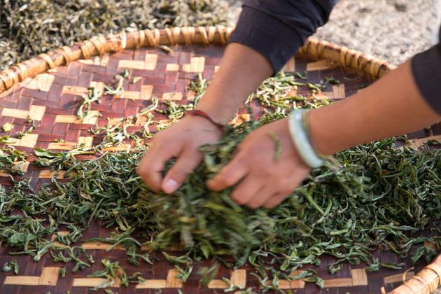 紅茶の作り方