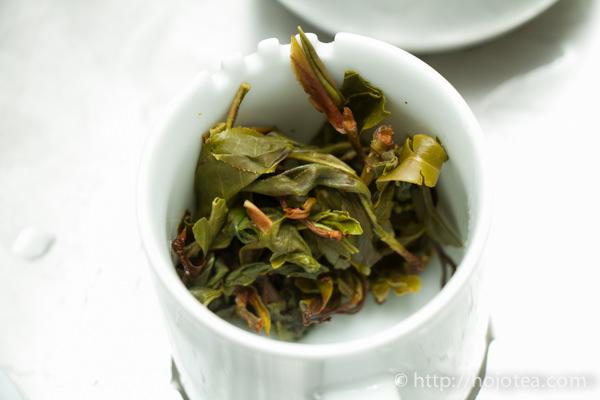 大雪山野生茶