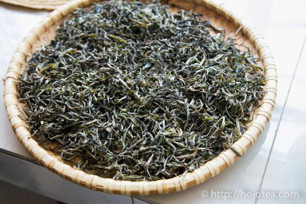 プーアル生茶の原料