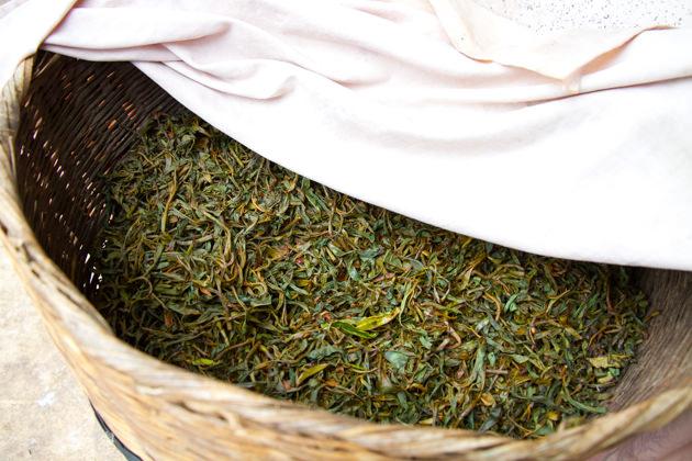 簡単な紅茶の作り方