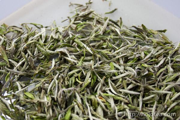 福建省における高級ジャスミンの原料となるベース緑茶