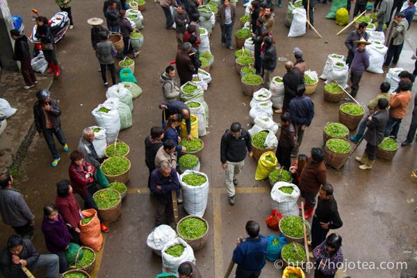 ジャスミンパール用の緑茶原料の市場