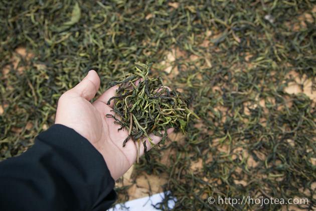 プーアル茶の天日乾燥